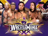 WrestleMania 30 Tag Team Title Match