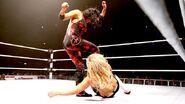 WWE World Tour 2013 - Dublin.20