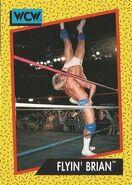 1991 WCW (Impel) Flyin' Brian 63