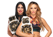 IIconics Womens Tag Champions