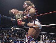 Royal Rumble 1991.2