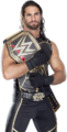 Seth rollins wwe world heavyweight champion