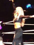 WWE House Show 5-31-13 1