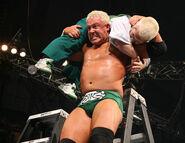 WrestleMania 23.13