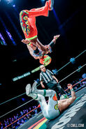 CMLL Martes Arena Mexico (September 24, 2019) 16