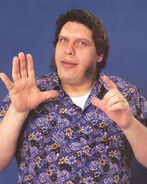Andre the Giant7