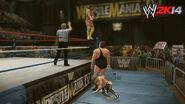 WWE 2K14 Screenshot.35