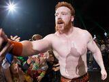 WWE World Tour 2014 - Nottingham