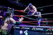 CMLL Martes Arena Mexico (February 25, 2020 22