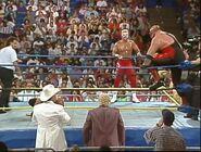 Clash of the Champions XXIII 13