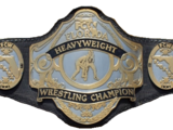 FCW Florida Heavyweight Championship