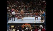 Survivor Series 1989.00009