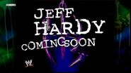 Twist of Fate The Matt & Jeff Hardy Story 29
