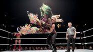 WWE World Tour 2016 - Manchester 7