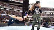 WrestleMania 33.19