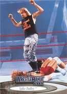 2003 WWE WrestleMania XIX (Fleer) Spike Dudley 17