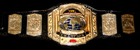 CZW Junior Heavyweight Championship | Pro Wrestling | FANDOM