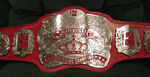 PWR Heavyweight Title Belt