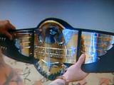 WCW Cruiserweight Tag Team Championship