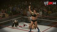 WWE 2K14 Screenshot.31