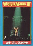 1987 WWF Wrestling Cards (Topps) And Still Champion 56