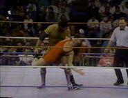 January 30, 1993 WWF Superstars of Wrestling.00019