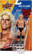 Ric Flair (WWE Series SummerSlam 2018)