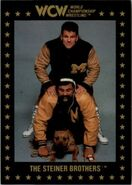 1991 WCW Collectible Trading Cards (Championship Marketing) The Steiner Brothers 6