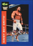 1991 WWF Classic Superstars Cards Davey Boy Smith 19