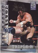 2002 WWF All Access (Fleer) Triple H (No.11)