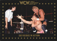 1991 WCW Collectible Trading Cards (Championship Marketing) Sid Vicious 43