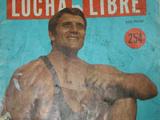 Lucha Libre 254