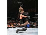 Undertaker WM 22