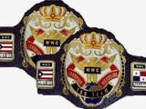 WWC World Tag Team Championship