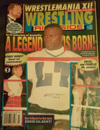 Wrestling Ringside - July 1995