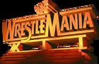 WM12 Logo