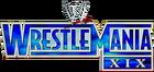 WM19 Logo
