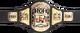 ROH TV Championship