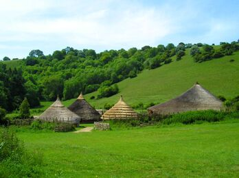 Celt-farm2