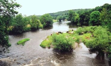 River-Towy