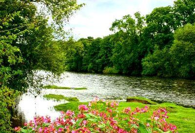 Wye-river