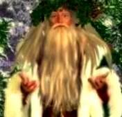 Fairy king2