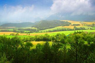 Hill woods