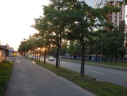 Petersburg4VII2014Godz23