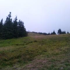 Szlak czarny z Hali Miziowej - trasy narciarskie