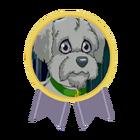 Medal Spota