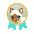 Medal Księżniczki Ami