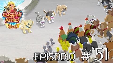Cuccioli Cerca Amici - Ep 51 Per sempre insieme (parte 1)
