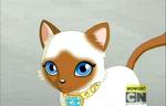 ID Księżniczka Ami
