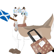 Patty holding flag of Scotland with her suitcase Scotland trip 2019 special